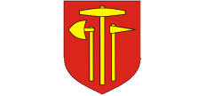 Bochnia logotyp 223 x 108
